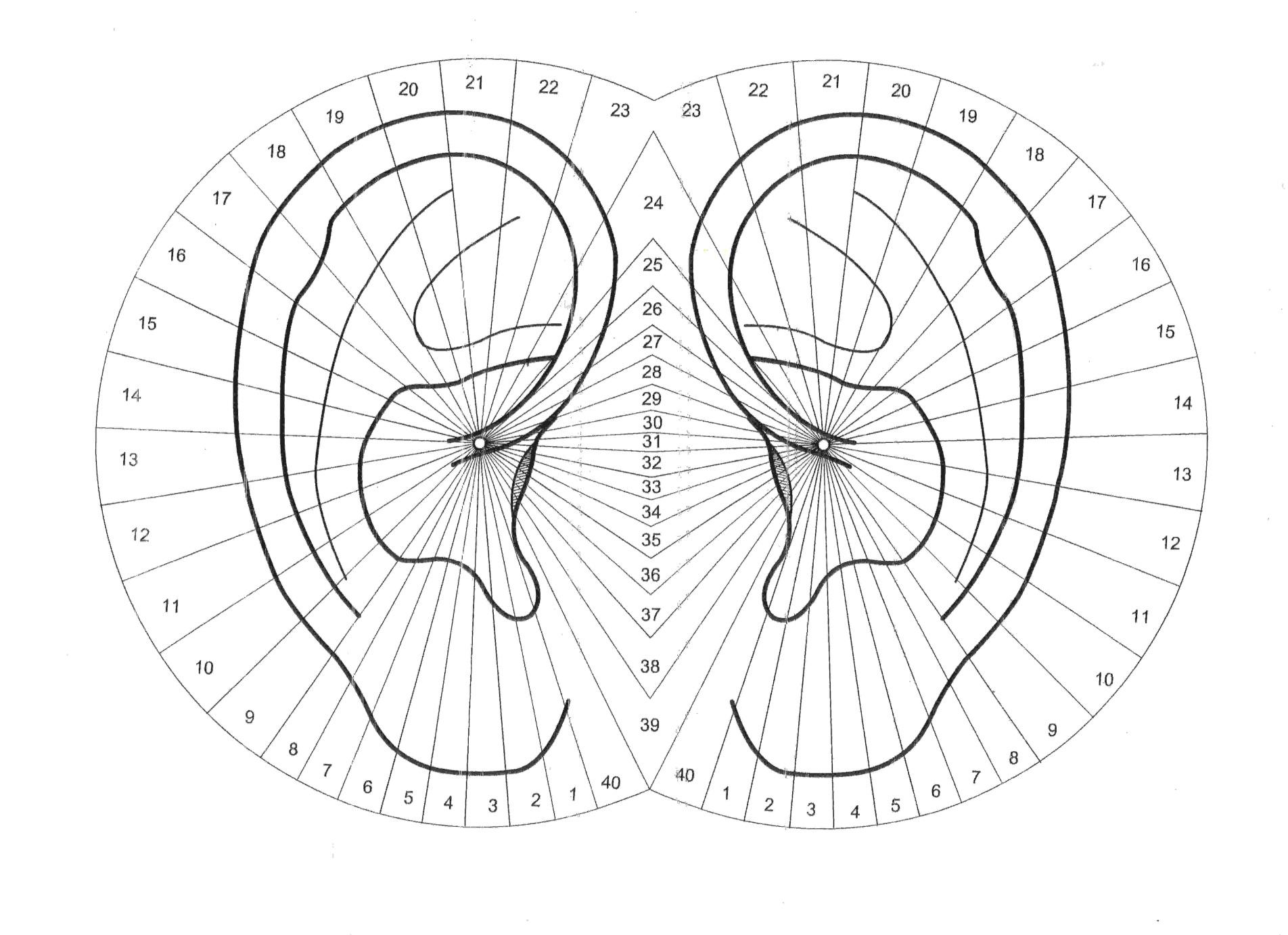 orecchio2