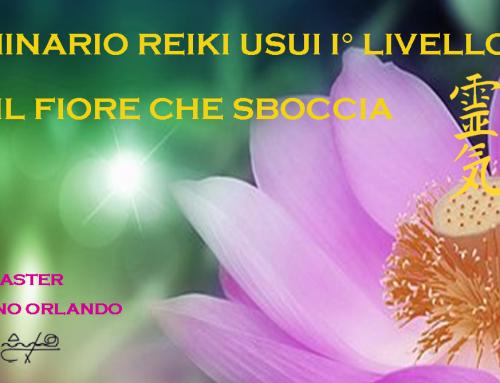 14 e 15 Settembre 2019 – Seminario Reiki I° Livello Usui
