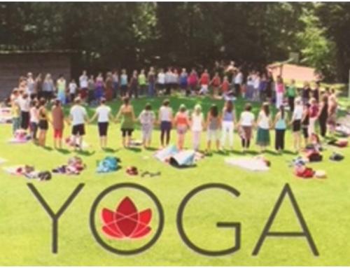 Nuovo corso Yoga