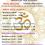 Corsi di Yoga On Line